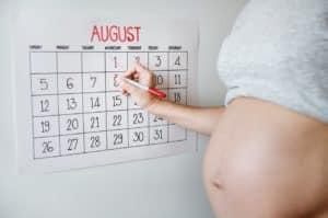 gravidanza calendario